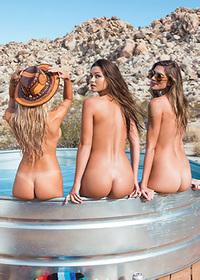 Playboy Festival