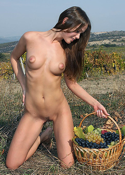 The queen of vineyard